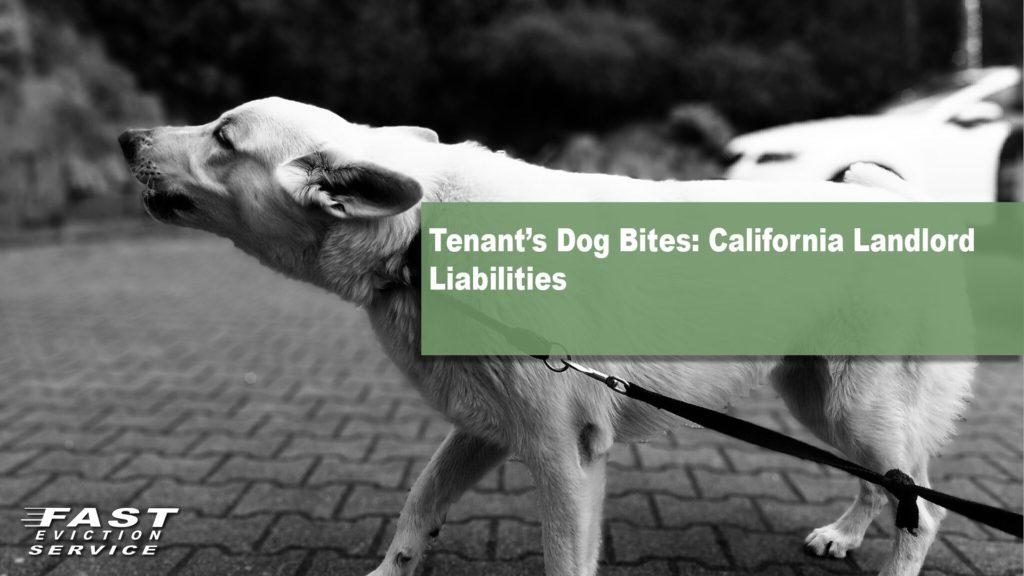 Tenant's Dog Bites: California Landlord Liabilities